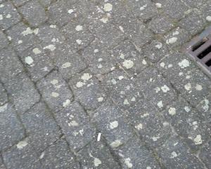 Kauwgum tapijt