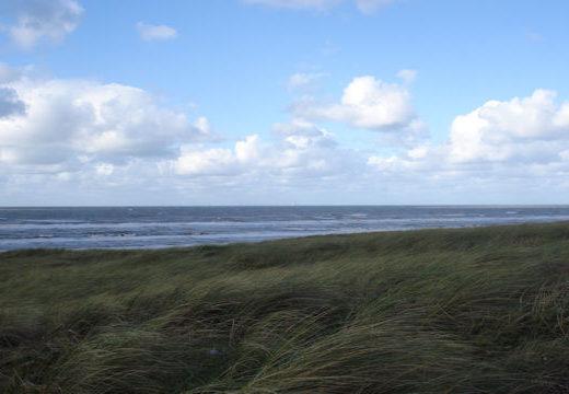 Kutland Nederland